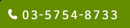03 5754 8733